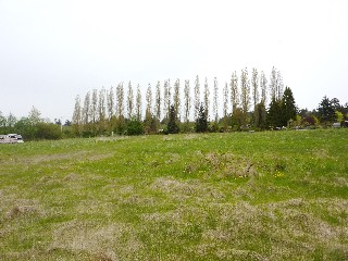 Picture of Point Roberts Parcel Number 405303-448240